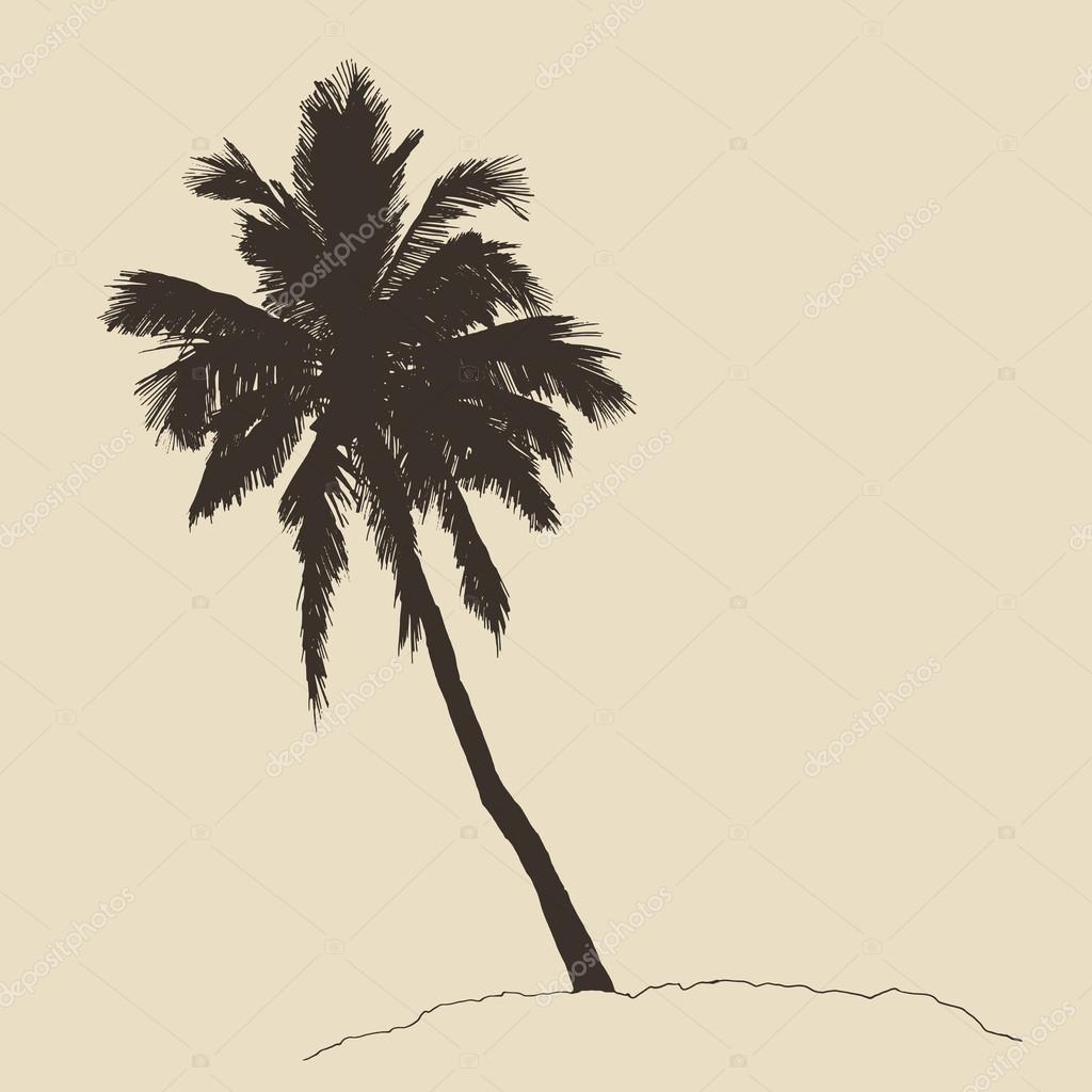 Drawn palm tree hand drawn #2