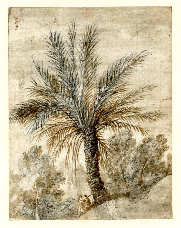 Drawn palm tree lanscape #12