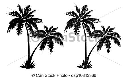 Palm Tree clipart palma 567 trees Images  Palm