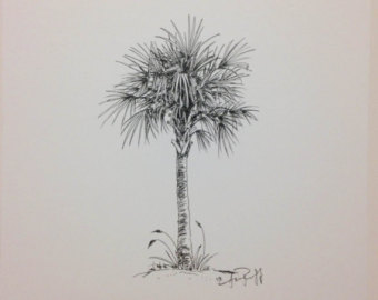 Drawn palm tree pen and ink #5