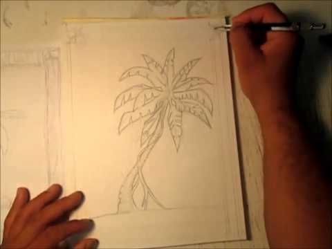 Drawn palm tree pen and ink #12