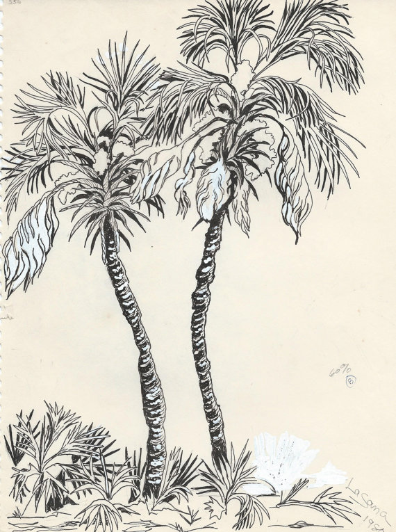 Drawn palm tree pen and ink #1