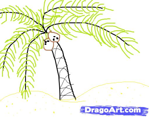 Drawn palm tree rainforest tree #9