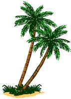 Drawn palm tree rainforest tree #15