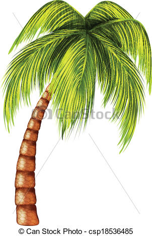 Palm Tree clipart drawn Free Stock Csp18536485 Picture Pages
