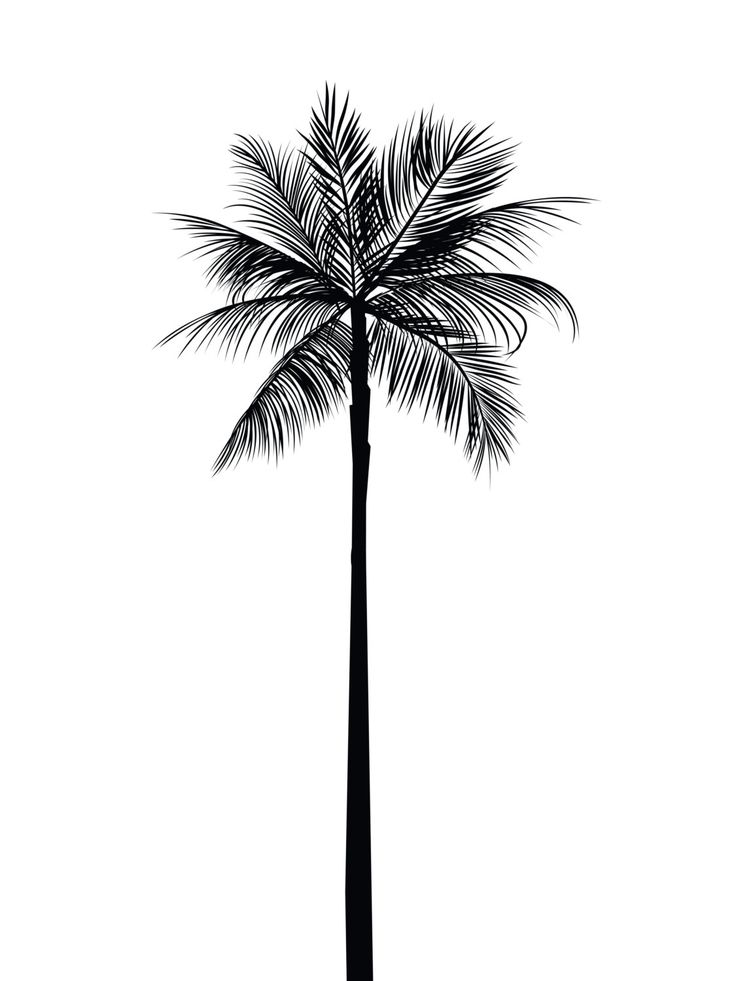Drawn palm tree simple #11