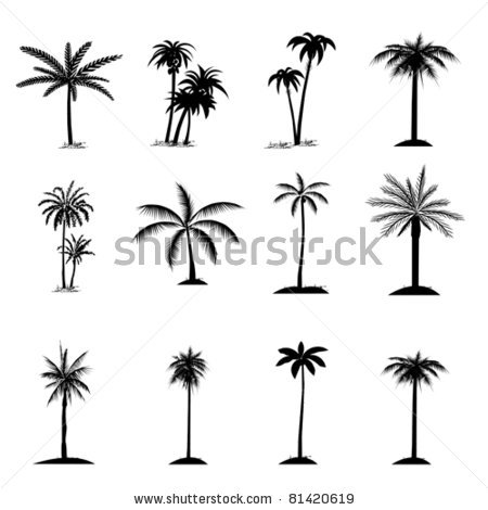 Drawn palm tree simple #5