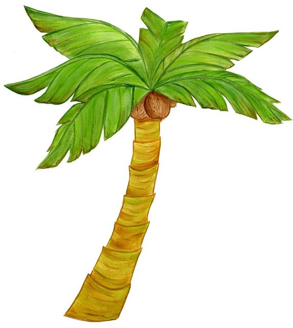 Drawn palm tree stencil Outline the about best palm