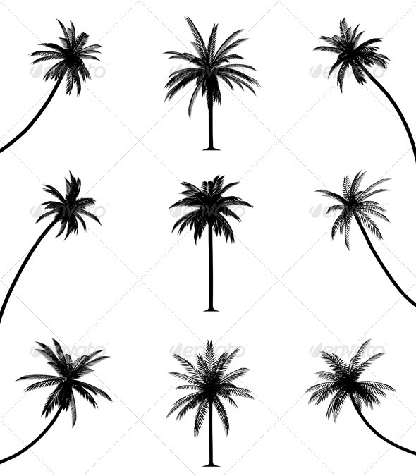 Drawn palm tree stencil Trees trees Tattoo Palm and