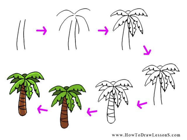 Drawn palm tree step by step #12