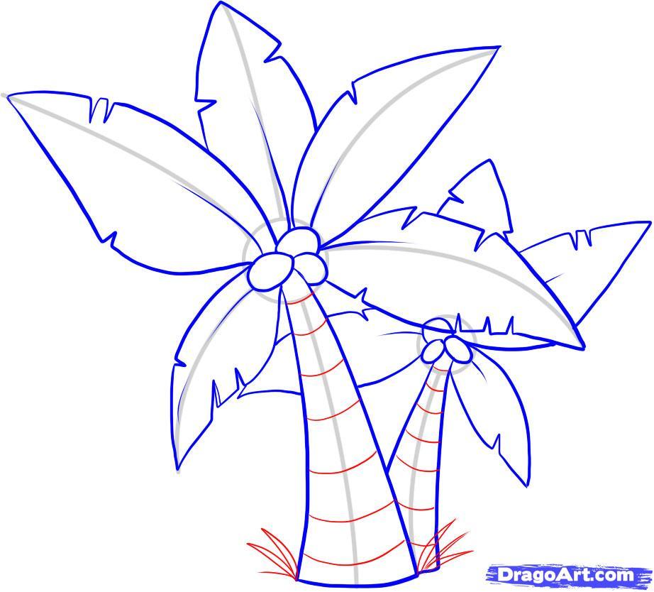 Drawn palm tree step by step #9