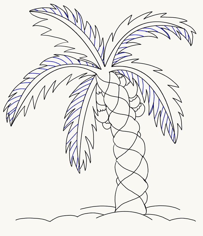 Drawn palm tree step by step #8