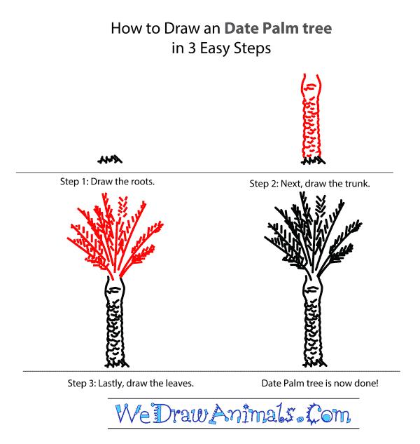 Drawn palm tree step by step #15