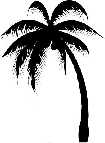 Drawn palm tree tribal Enchanting for Extremely Especially Designs