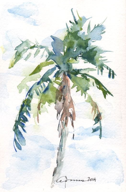 Drawn palm tree watercolor painting Trees Tree drawing palms Images