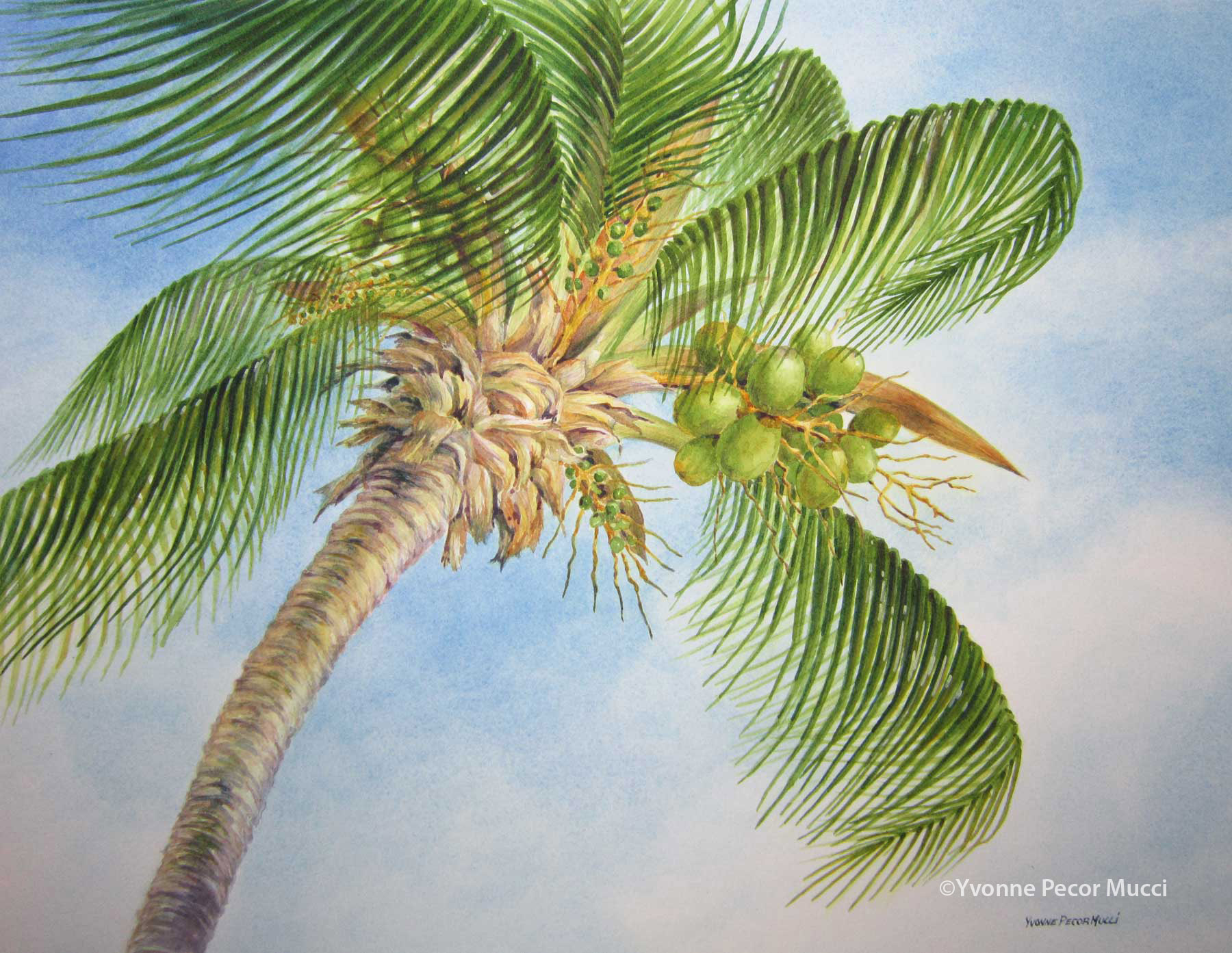 Drawn palm tree watercolor painting Yvonne Tree Mucci x Yvonne