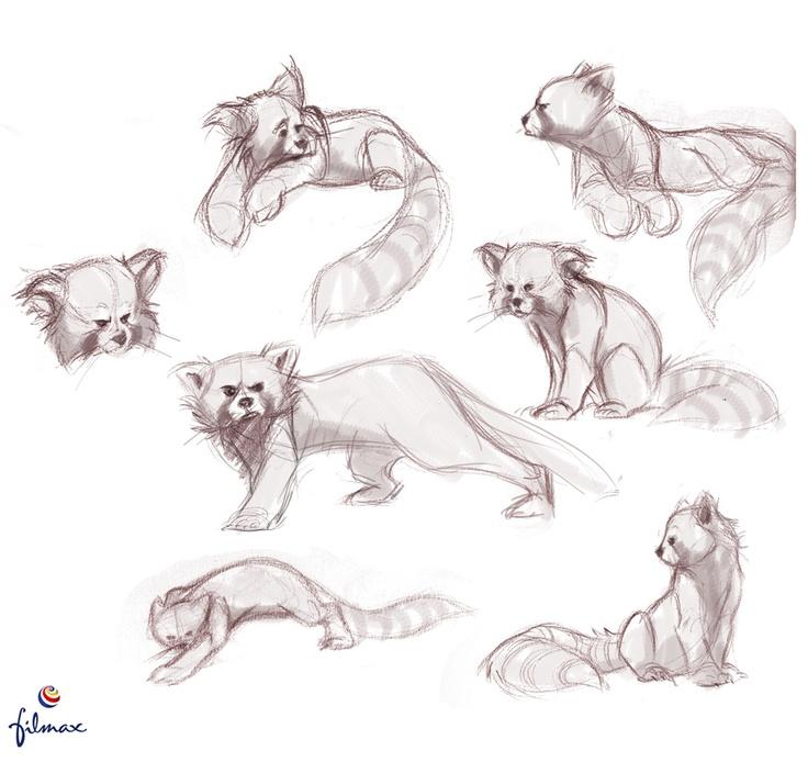 Drawn red panda sheet More Red and Pandas images