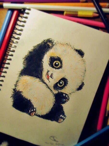 Drawn panda cute lil And drawing panda More drawing
