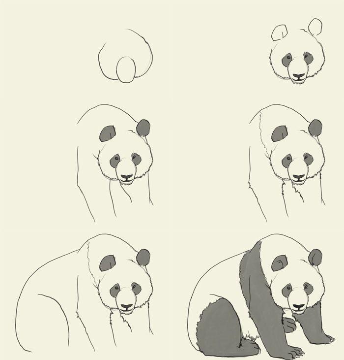 Drawn panda detail Fun on to a 1031