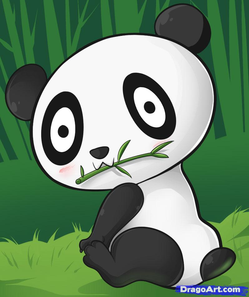 Drawn rainforest animated Step Panda panda how How
