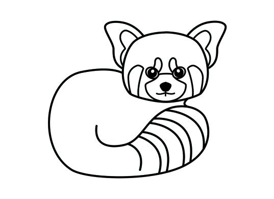 Drawn red panda sheet Page Panda coloring Kids panda