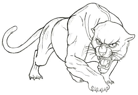 Drawn panther Pic Pencil Images Panther Drawing