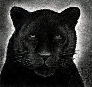 Drawn panther realistic & how ART panther draw