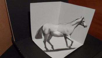 Drawn paper anamorphic illusion 3D 3D a Anamorphic Trick