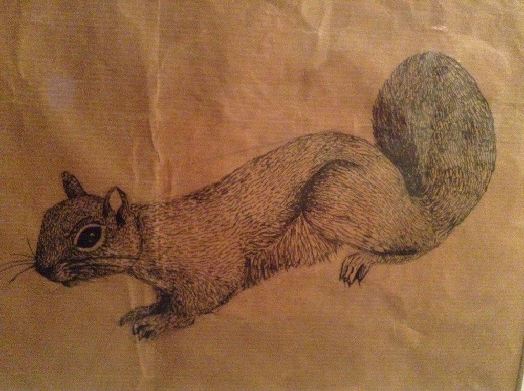 Drawn paper deviantart Brown paper pen drawn Squirrel