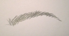 Drawn paper eyebrow StumbleUpon My Draw com in