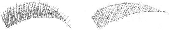 Drawn paper eyebrow Paper eyebrows eyebrow RapidFireArt draw
