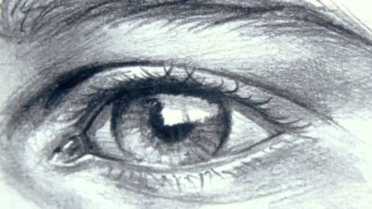 Drawn paper eyebrow - Pencil and in color drawn paper ...