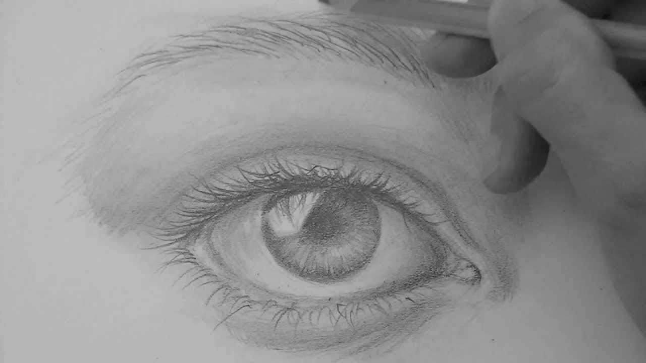 Drawn paper eyebrow Realistic by step eyebrows eyebrows