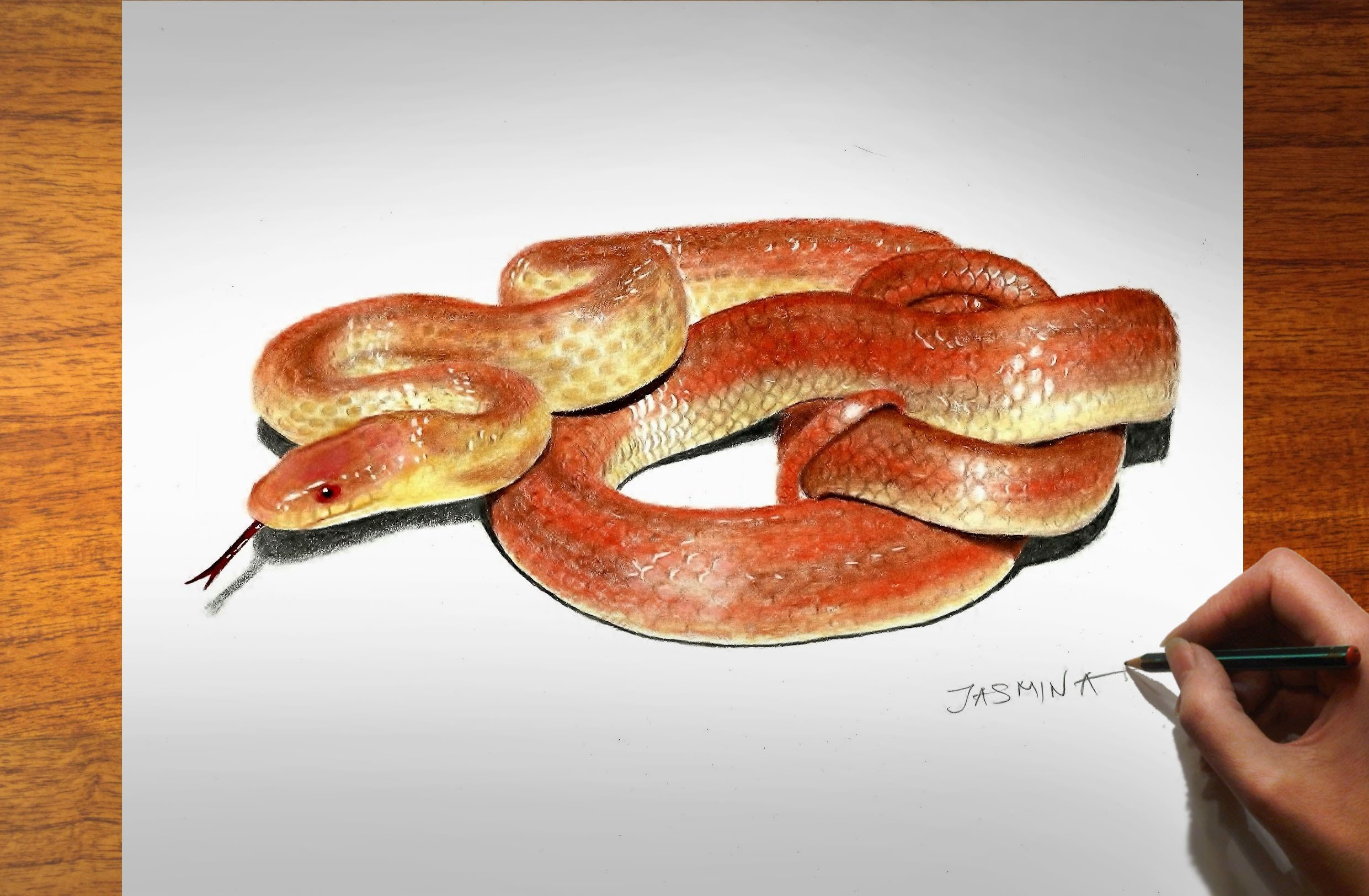 Drawn snake realistic How Draw Snake YouTube Realistic