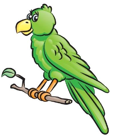 Drawn parrot #4