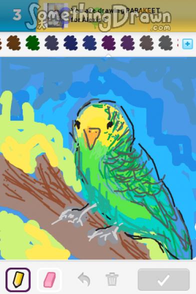 Drawn parakeet PARAKEET SomethingDrawn on drawn parakeet
