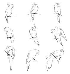 Drawn parakeet tattoos  embroidery Parrot Ideas pattern