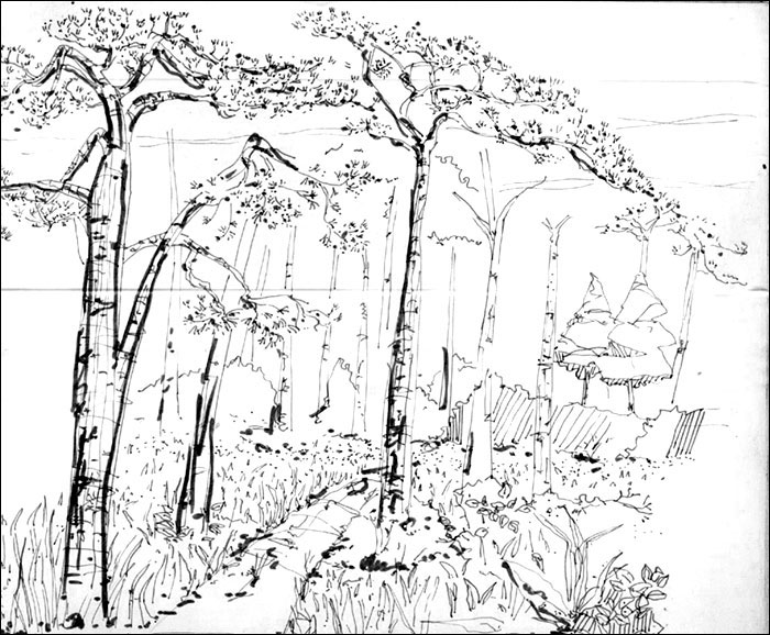 Drawn park Com : : Drawn: BlogGang