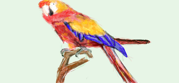 Drawn parrot #10