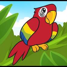 Drawn parrot #6