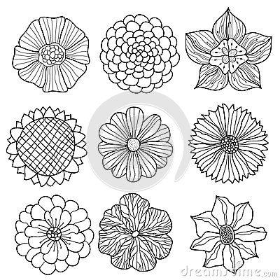 Drawn floral design drawing #10