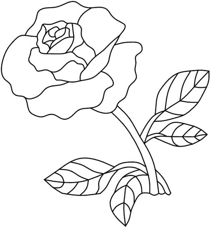 Drawn red rose complex Painting Single patterns Stained+Glass+Patterns+Flowers Pinterest