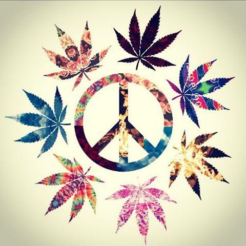 Drawn pot plant peace sign Hippie 1863 ☮ Peace American