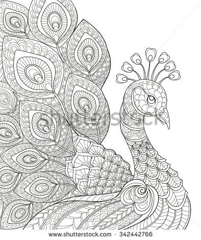 Drawn peacock Drawing doodle page white Adult