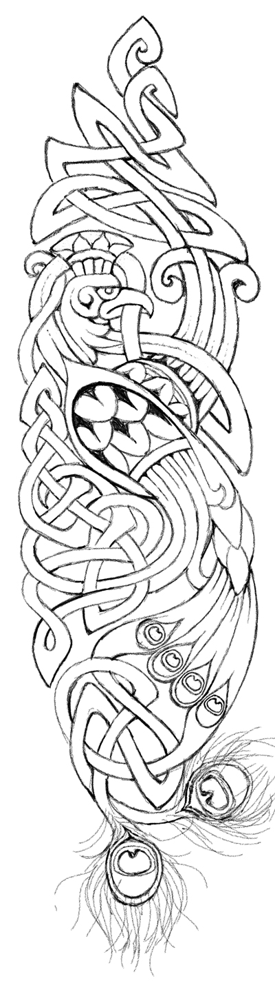 Drawn peacock celtic By by Peacock metalsister Celtic
