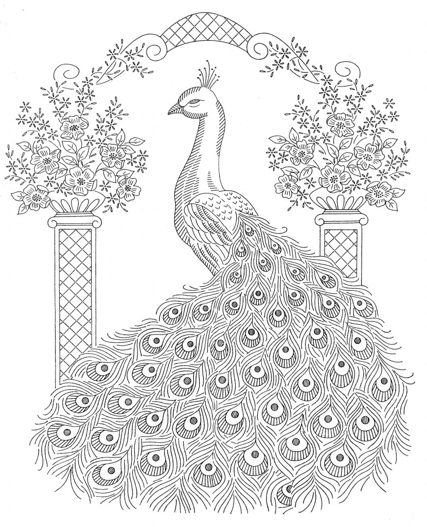 Drawn peacock coloring page To Peacock Peacock Peacock Drawing
