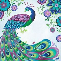 Drawn peacock colour full Images Peacock Pinterest on