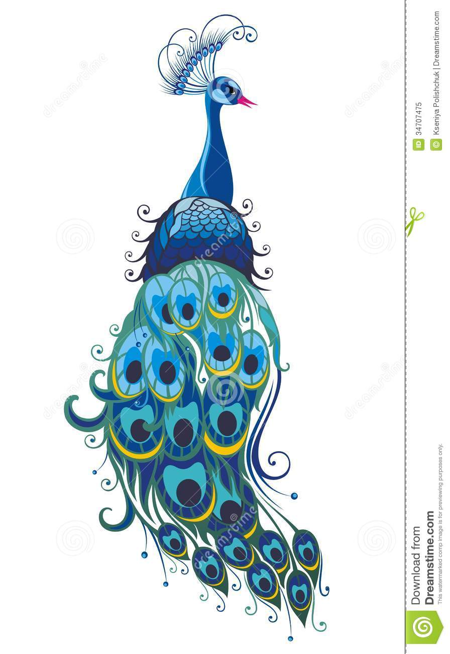 Drawn peacock graphic design Free graphics Search free peacock