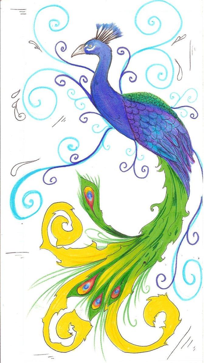 Drawn peafowl Peacock odono Drawings peacock deviantART