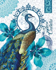 Drawn peafowl artistic Would peacock HouseofChabrier like canvas